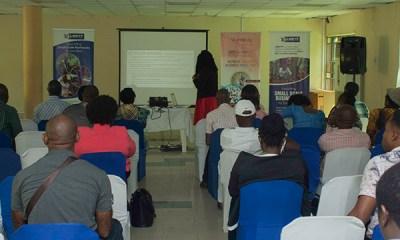 1300 Entrepreneurs Undergo LSETF Training Programs