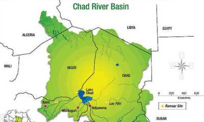 FG Stops Oil Exploration in Chad Basin