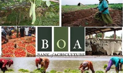 Bank of Agric to Give Farmers Loans at 7% Interest Rate