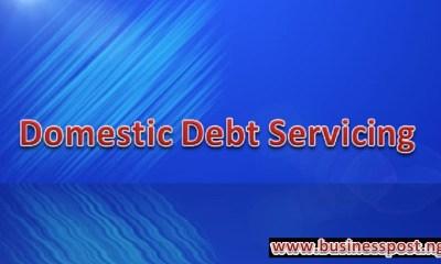domestic debt servicing