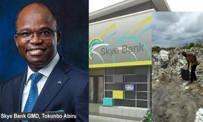 How Skye Bank Management Tampered With Figures to Deceive Regulators