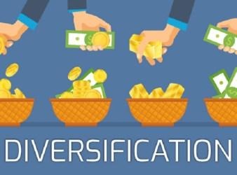Economics of Diversification