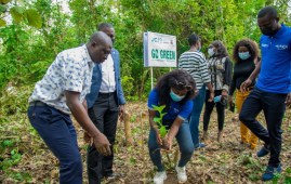 Go-Green Afforestation Project