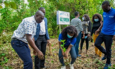 Go-Green Afforestation Project