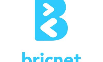 Briclinks financial results