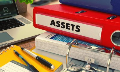 Government Assets