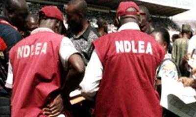 Drug Dealers NDLEA