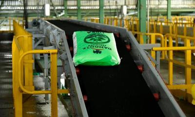 Dangote Fertilizer bag