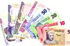 Naira already devalued, 28 professional associations insist