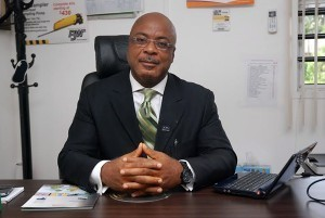 FG Urged To Partner Chinese Investors On Power Supply