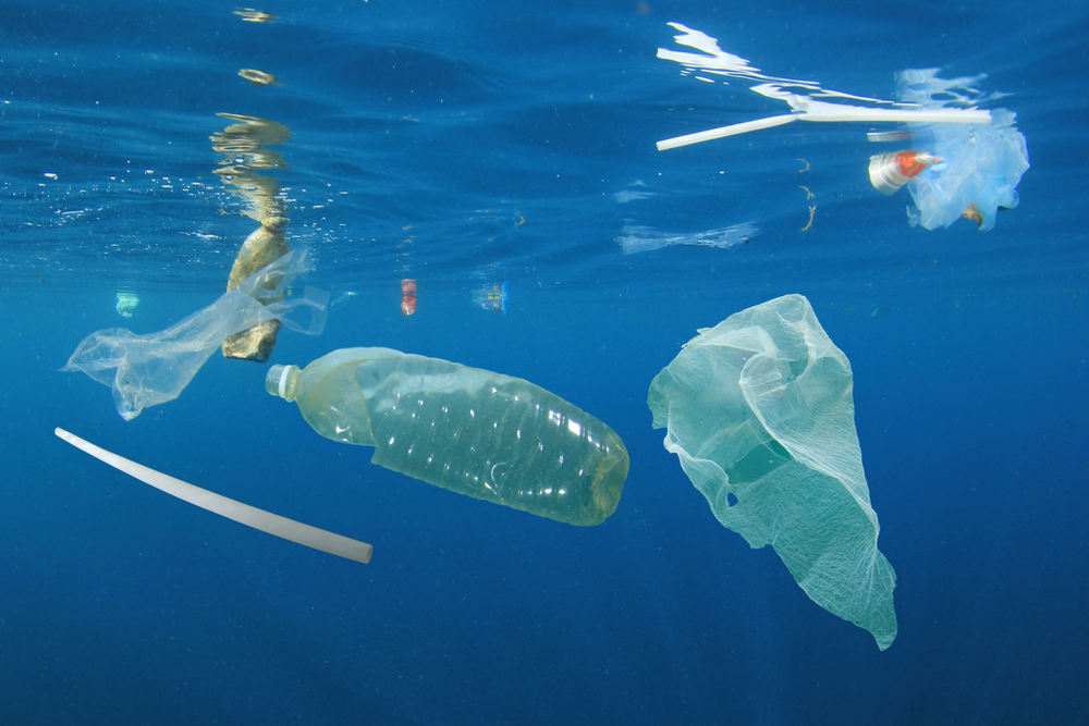 Facts About Ocean Pollution