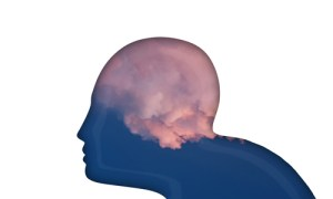 what is brain fog caused by