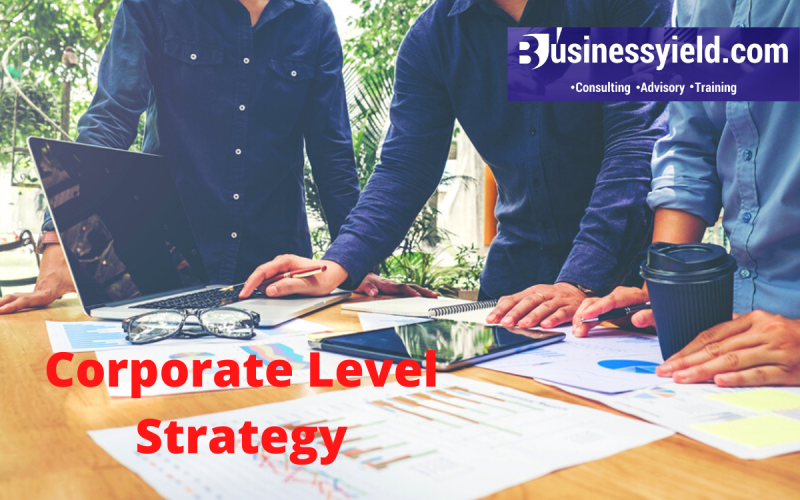 Corporate level strategy- Definition and types