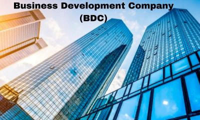 Business-Development-Company-BDC