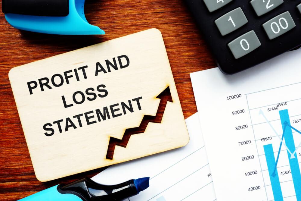 Balance Sheet vs Profit and Loss Statement