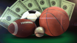 Guide for choosing betting system software