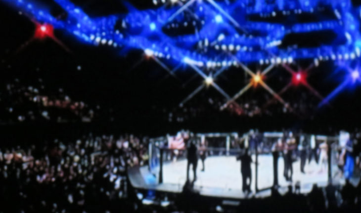 Blurred background. mma fight octagon stage. ring extreme Sport mixed martial arts competition tournament