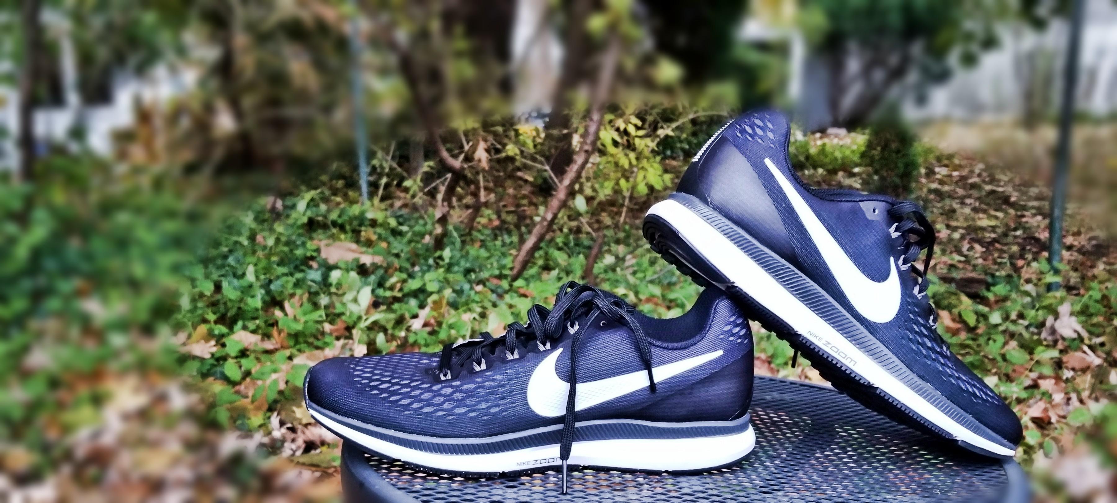 finest selection ce2ba 8a51e Comfort  The Nike Air Zoom Pegasus 34′s ...