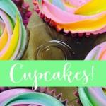 Adult Cupcake Class