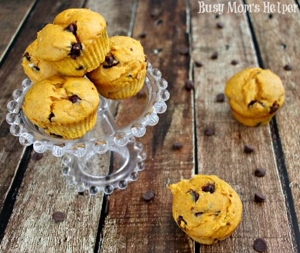 Pumpkin Chocolate Chip Muffins / by Busy Mom's Helper #muffins #pumpkin