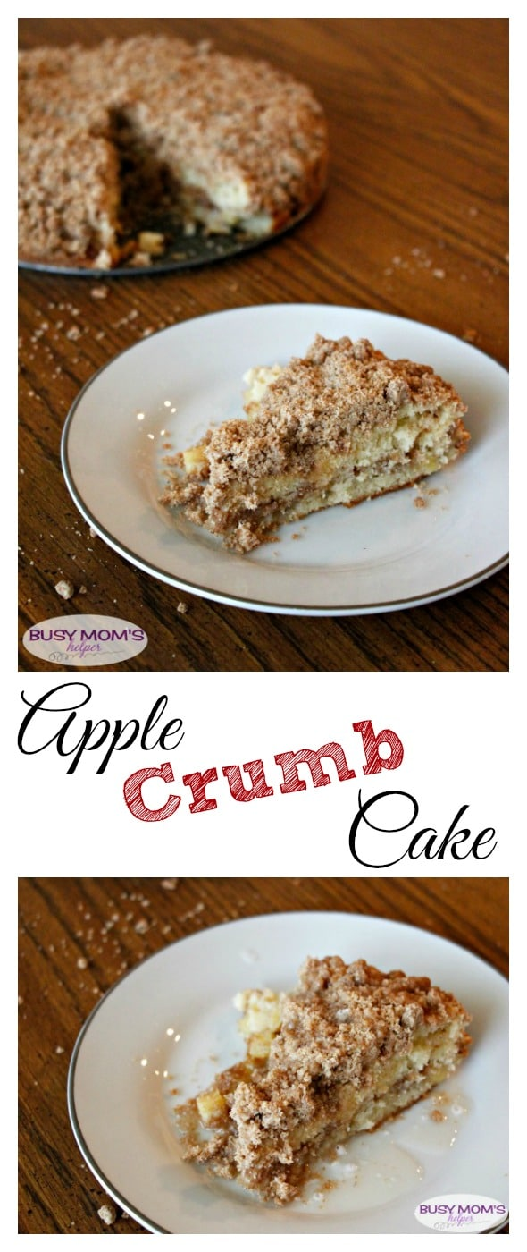Apple Crumb Cake / delicious and simple dessert / by BusyMomsHelper.com