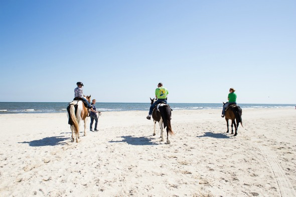 Our Top 4 Adventures for Gulf County Florida #ad @gulfcountyfl