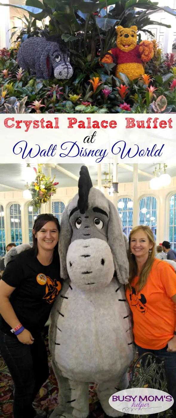 Crystal Palace Buffet at Walt Disney World / an honest review (not sponsored)
