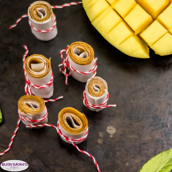 Homemade Mango Roll Ups / a great healthy afternoon snack idea, some homemade fruit roll ups