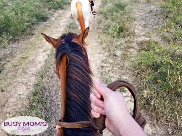 Horseback Riding in Kauai Hawaii #Ad #KauaiDiscover