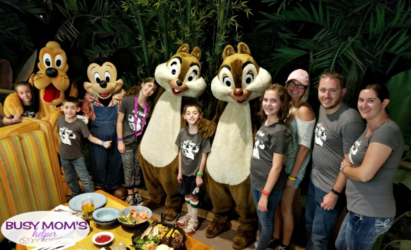 Tips & Tricks for Meeting Characters at Walt Disney World #characters #themepark #waltdisneyworld #disneyworld #familytravel #photography #familyfun