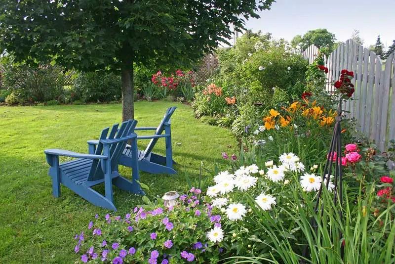 Colorful Adirondack Chairs Gardening