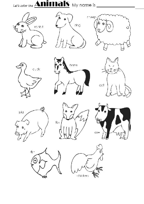 Animals For Coloring Worksheets - Novocom.top