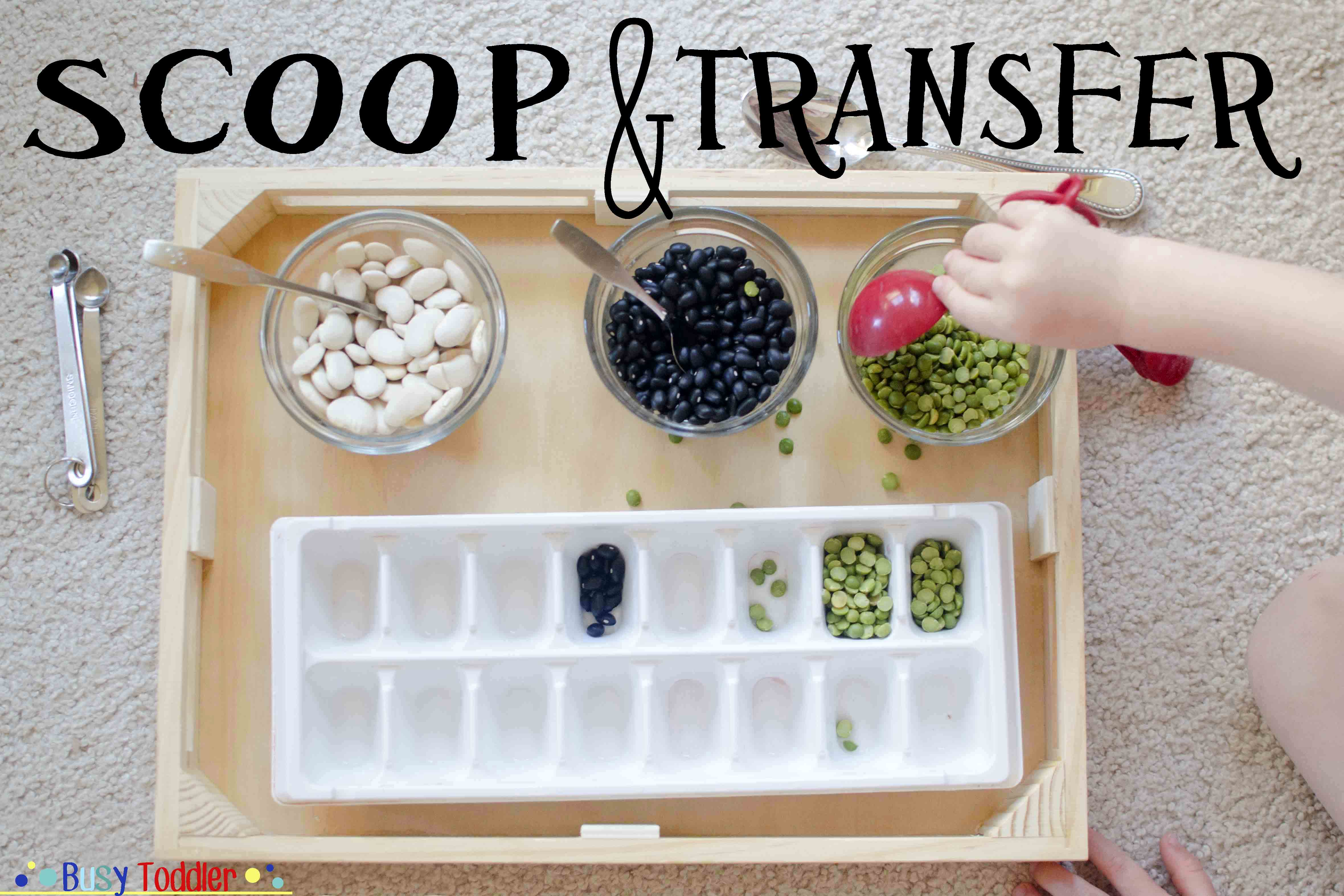 Scoop And Transfer