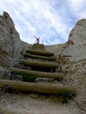 Ladder on Notch Trail