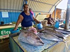 ::that's a big fish::