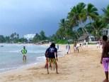 ::cricket on the beach::