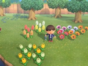 花 あつ 効率 森