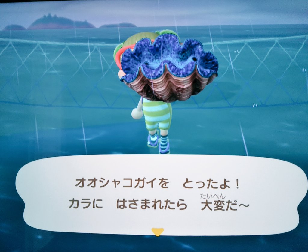 【あつ森】オオシャコガイの捕獲、遭遇のコツは?【あつまれ どうぶつの森】