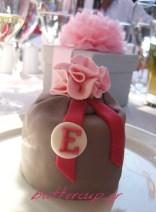 mini cake 2 wtr