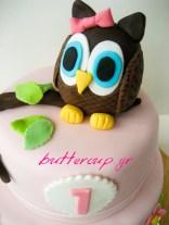 owl cake-2wtr