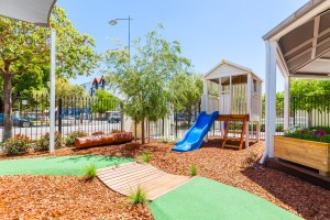 Vegetable garden, fruit trees & slides - Buttercups