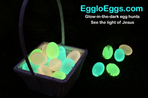 Egglo Review
