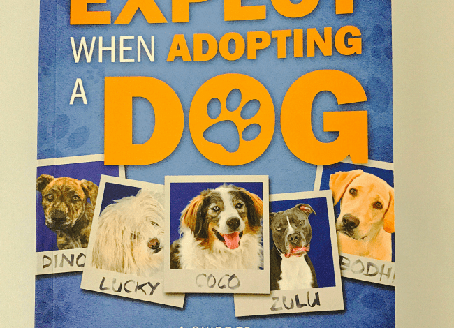 What To Expect When Adopting A Dog {Book Review}