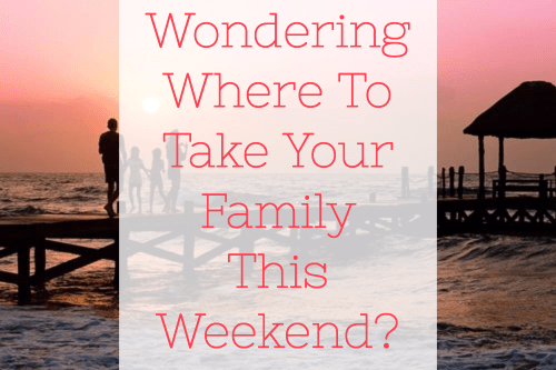 Wondering Where To Take Your Family This Weekend?