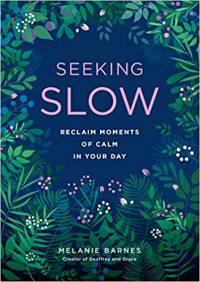 Seeking Slowing Down - Melanie Barnes