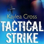 Guest Post: Meet USAF Staff Sergeant Ryan Wentworth, Combat Controller by Kaylea Cross + Fluttering Thoughts: Tactical Strike by Kaylea Cross + Giveaway