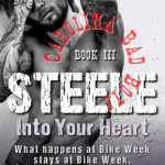 Indie Flutters: Steele, Into Your Heart by Rie Warren & Excerpt
