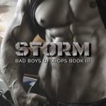Indie Flutters: Storm by Rie Warren & Excerpt
