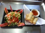 Mango Salad and Spring Rolls