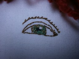 Close up doll eye